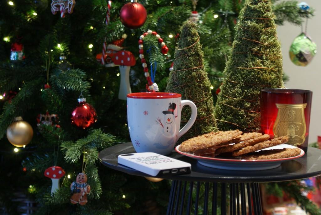 christmas, oatmeal, glutenfree, gf, dairy free, oatmeal