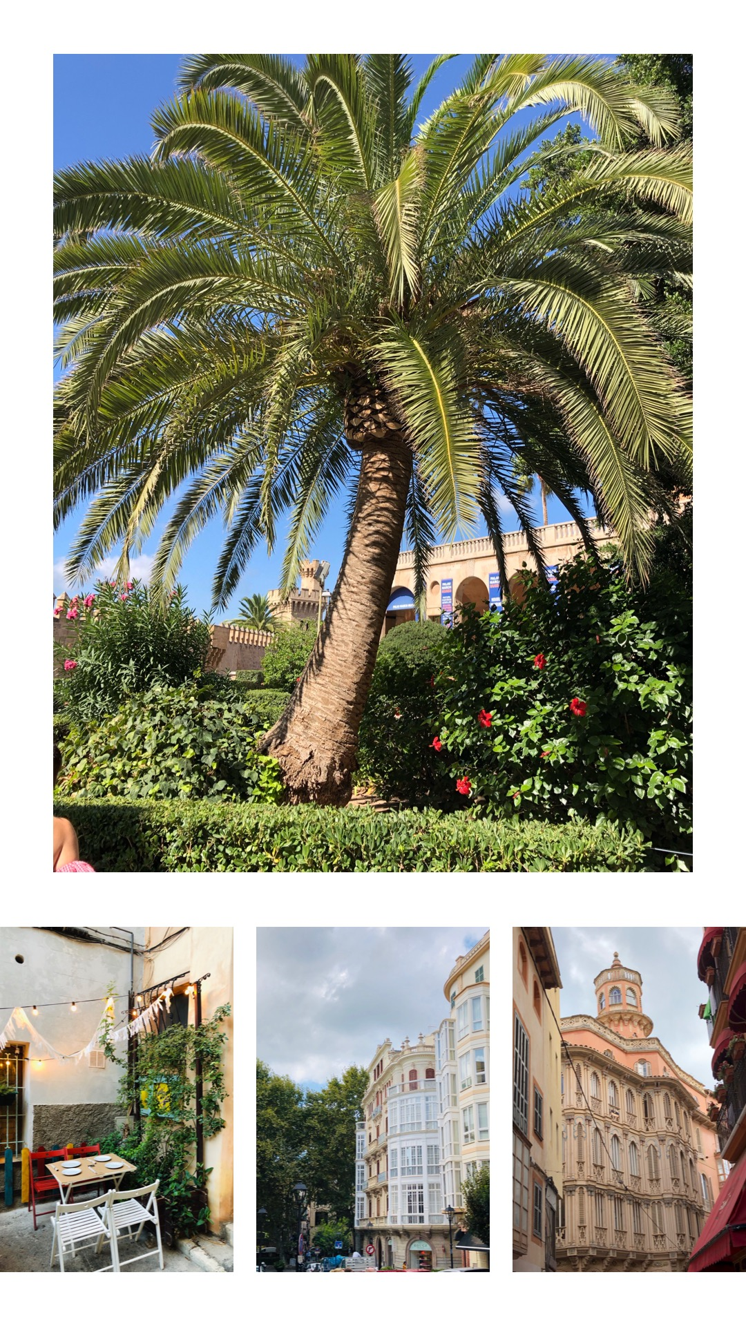 Palma Mallorca citytrip